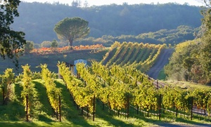 Palaia Vineyards: Wine Tasting and Take Home Glasses for Two, Four, or Six At Palaia Vineyards (Up to 62% Off)