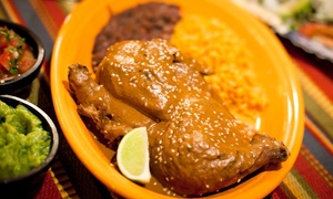 Latin Grill Fare At Sonoma Latina Grill (up To 53% Off). Two Options Available.