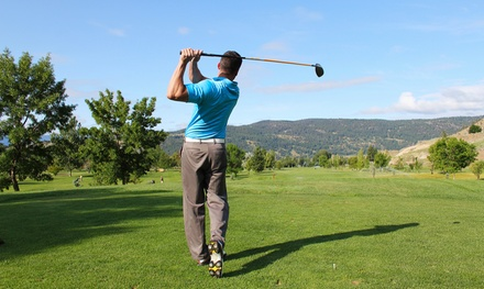 One, Two, or Three 60-Minute Golf Lessons for Up to Two at Bing Maloney (Up to 54% Off)