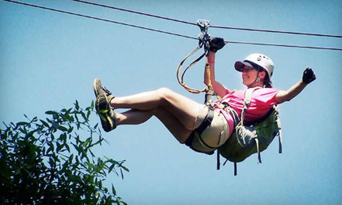 Adventures Unlimited - Milton, FL: $88 for a Three-Hour Taste of The Tours Zipline Excursion for Two from Adventures Unlimited ($178 Value)