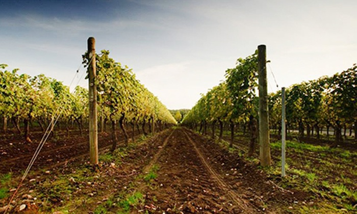 Langley Wine Tour - Multiple Locations: Wine Passport and Self-Guided Tour of Seven Wineries for One or Two from Langley Wine Tours (Up to 51% Off)