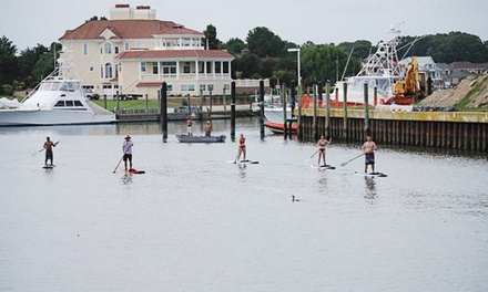 $39 for a Two-Hour Lesson and Flat Water Bald Eagle Eco Tour from Rudee Inlet SUP ($80 Value)