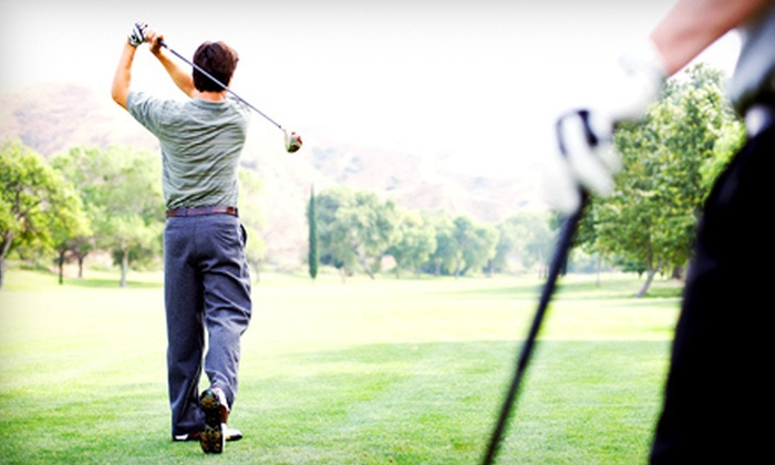 A-Swing Golf Academy - Holiday Springs: Golf Lessons with Professional Instructor at A-Swing Golf Academy in Margate (Up to 77% Off). Four Options Available.