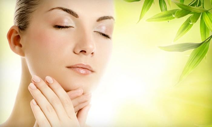 Bliss Organic Day Spa - Sebastopol: Facial Package, Massage Package, or Massage-and-Facial Package at Bliss Organic Day Spa in Sebastopol (Up to 55% Off)