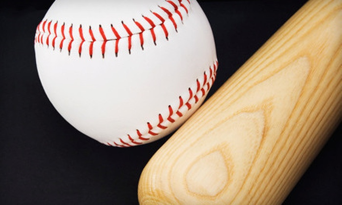 Premier Baseball Academy - Multiple Locations: One, Three, or Six Months of Unlimited Use and a Rawlings Ash-Wood Bat at Premier Baseball Academy (Up to 61% Off)