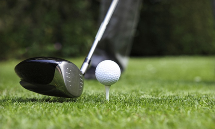Craig Snyder at Metropolitan Golf Links - Oakland: One, Two, or Three 60-Minute Private Golf Lessons at Metropolitan Golf Links in Oakland (Up to 60% Off)