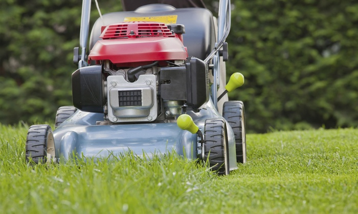 Kleen Kuts Landscaping - Fort Lauderdale:  $69.99 for One Yard Maintenance Package at Kleen Kuts Landscaping ($150 value)