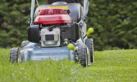 $69.99 for One Yard Maintenance Package at Kleen Kuts Landscaping ($150 value)
