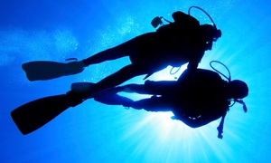 Canyon Lake Divers: $70 for an Introductory Scuba-Diving Lesson from Canyon Lake Divers ($140 Value)