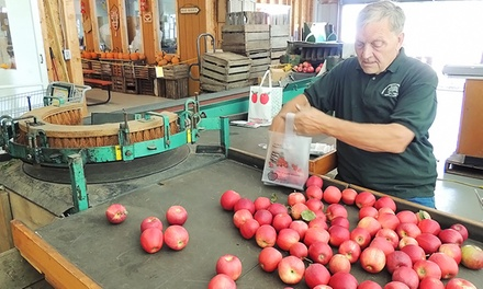 One Dozen Donuts with a Gallon of Cider, or Two Bottles of Apple Honey Wine at Obstbaum Orchards (Up to 50% Off)