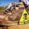 55% Off Mud Factor Run in Millington
