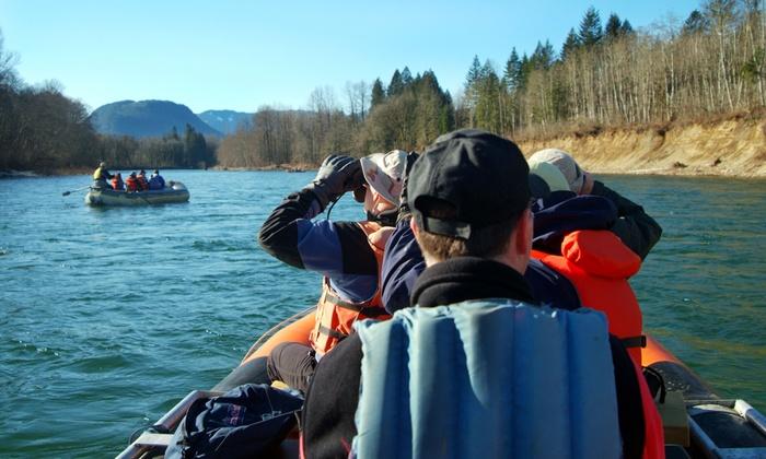 Pacific NW Float Trips - Howard Miller Steelhead Park: Skagit River Bald Eagle Raft Trip for One, Two, or Four from Pacific NW Float Trips (Up to 51% Off)