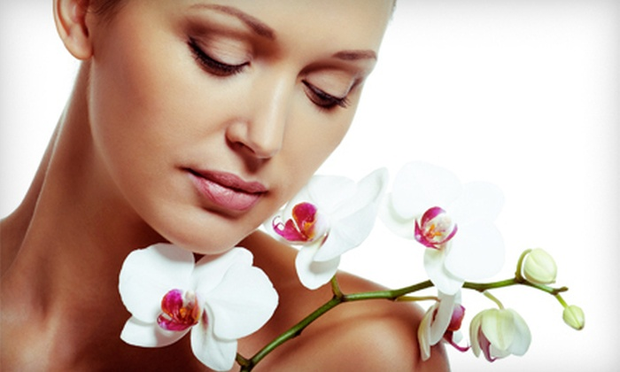 The Studio at Rockwall Spa - Rockwall: One or Two Dermaplane Treatments and Facials at The Studio at Rockwall Spa (Up to 64% Off)