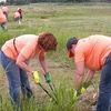 $12 Donation to Help Clean Up Dunning-Read Conservation Area