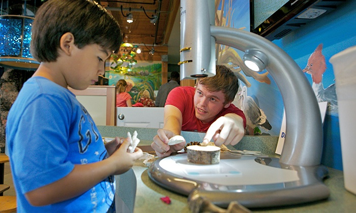 Hands On Children's Museum - Downtown Olympia: $29.99 for Family Admission for Five to Hands On Children's Museum ($54.75 Value)