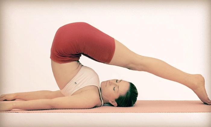 Zen Wellness - Dyer: 10 or 20 Fitness Classes at Zen Wellness (Up to 65% Off)