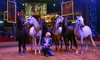 """Big Apple Circus: """"Luminocity!"""" - TD Bank Ballpark: Big Apple Circus's """"Luminocity"""" at TD Bank Ballpark on February 27–March 6 (Up to 42% Off)"""