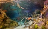 """SEA LIFE Grapevine Aquarium - Grapevine Mills Mall: Visit for Two or """"Sharks After Dark"""" Event for One on August 8 or 9 at Sea Life Grapevine Aquarium (Up to Half Off)"""