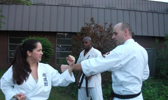 Okinawan Karate Of Alexandria - Alexandria: Eight Weeks of Unlimited Karate Classes at Okinawan Karate of Alexandria