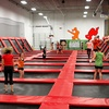 Half Off Playtime at Xtreme Trampolines