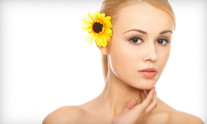 Blink! Salon and Spa - Wakefield: Spa Package, or One or Three European or American Facials at Blink! Salon and Spa (Up to 60% Off)