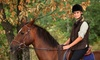 Equestricise - Capistrano Villas: Two or Three Semiprivate Horseback-Riding Lessons at Equestricise (Up to 55% Off)