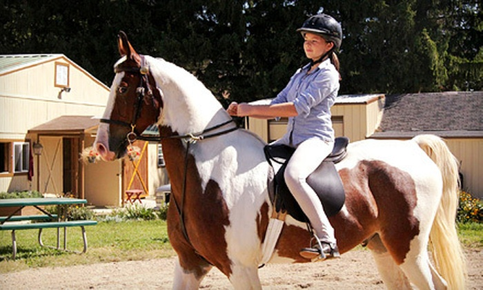 Classic Farms Riding Academy - Waukesha: $39 for Two 60-Minute Private Horseback-Riding Lessons at Classic Farms Riding Academy ($80 Value)
