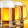 Up to 54% Off Beer-Brewing Starter Kit