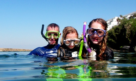Two-Hour Snorkel Safari with Refreshments and Photos from R449 for Two with Tidal Tao Snorkling Safaris (Up to 39% Off)