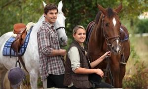 חוות הבוקר: חוות הבוקר במושב שתולים: טיול רכיבת סוסים בין יערות ופרדסים, ב-79 ₪ בלבד!