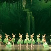 Shanghai Ballet – Up to 70% Off