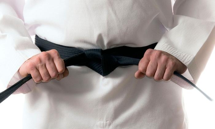 Aiki-Kenjundo - Colorado Springs: 5 or 10 Kid or Adult Kenjundo Classes at Aiki-Kenjundo (Up to 70% Off)