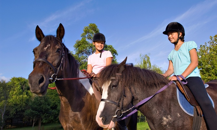Whispering Winds Training Center - Quinlan: One or Three Horseback-Riding Lessons at Whispering Winds Training Center in West Quinlan (Up to 59% Off)