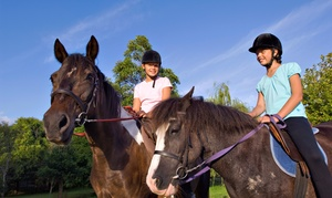 Whispering Winds Training Center: One or Three Horseback-Riding Lessons at Whispering Winds Training Center in West Quinlan (Up to 59% Off)