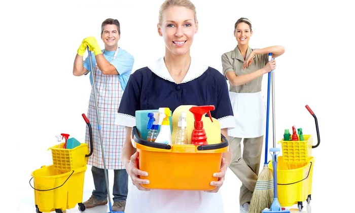 Busy Bea Cleaning Services Llc - North Jersey: Four Hours of Cleaning Services from Busy Bea Cleaning Services LLC (40% Off)