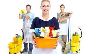 City Living Solutions: $20 for $50 Worth of Housecleaning — City Living Solutions