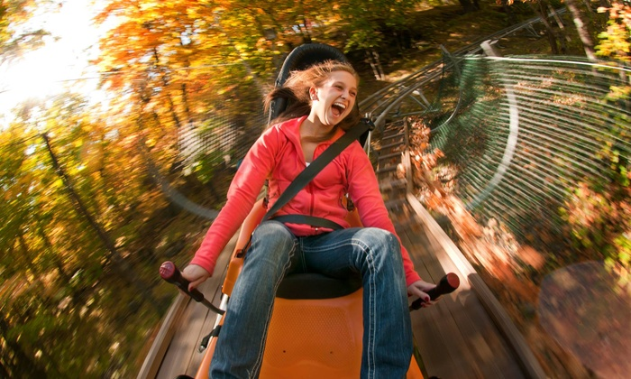 Spirit Mountain - Duluth: Adventure Park for Four or Eight at Spirit Mountain (Up to 56% Off)