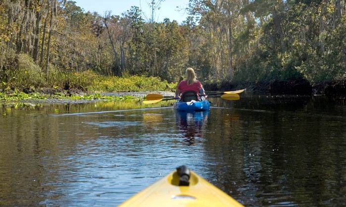 River Guide Kayaks - River Falls: Four-Hour Kayaking Trip for Two, Four, or Six from River Guide Kayaks (51% Off)