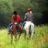 Up to 60% Off Horseback Trail Ride