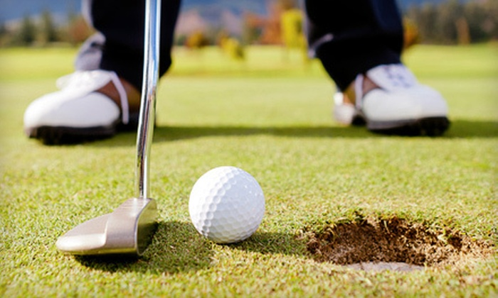 Bing Maloney Golf Course - Southwestern Sacramento: One or Three 60-Minute Golf Lesson for One or Two People at Bing Maloney Golf Course (Up to 59% Off)