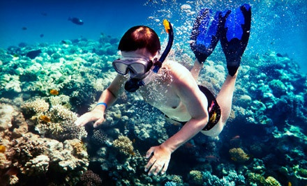 2.5-Hour Snorkeling Cruise for a Child 12 or Younger (a $40 value) - Island Magic Catamaran in Honolulu