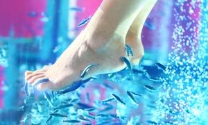 Sister Center: Uno o 3 fish pedicure e manicure con limatura e smalto su mani o piedi (sconto fino a 76%)