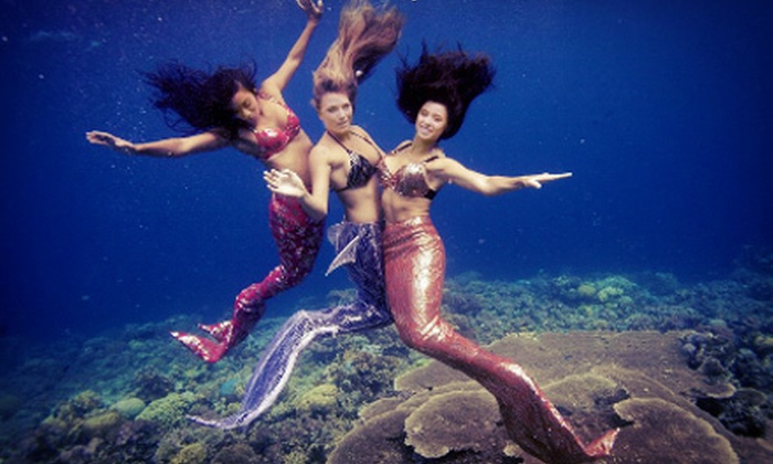 Christopher Gosch Underwater Photography - Playa Del Rey: Underwater Photo Shoot with Lunch for 1, 2, or Up to 10 from Christopher Gosch Underwater Photography (Up to 65% Off)