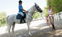 Up to Four Group Horse Riding Lessons or a Private Lesson for One or Two at Kimblewick Equestrian Centre (Up to 59% Off)