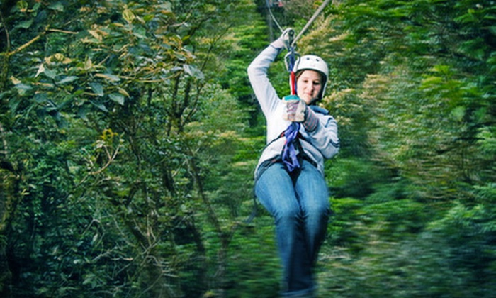 Aerial Adventures - Lake Geneva: Canopy Zipline Tour and Climbing-Wall Time with Keepsake DVD for One, Two, or Four at Aerial Adventures (Up to 54% Off)
