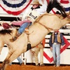 Up to 63% Off at Fort Worth Stock Show & Rodeo