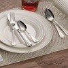 Mikasa Stainless Steel Flatware Set with Caddy