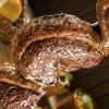 30% Cash Back at Broncos Brazilian Steak House