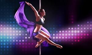 Crazy Pole Dresden: 60-minütiger Poledance-Schnupperkurs für Zwei oder Vier bei CrazyPole ab 14,90 €