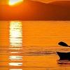 Half Off Kayak Rental or Tour in Oyster Bay